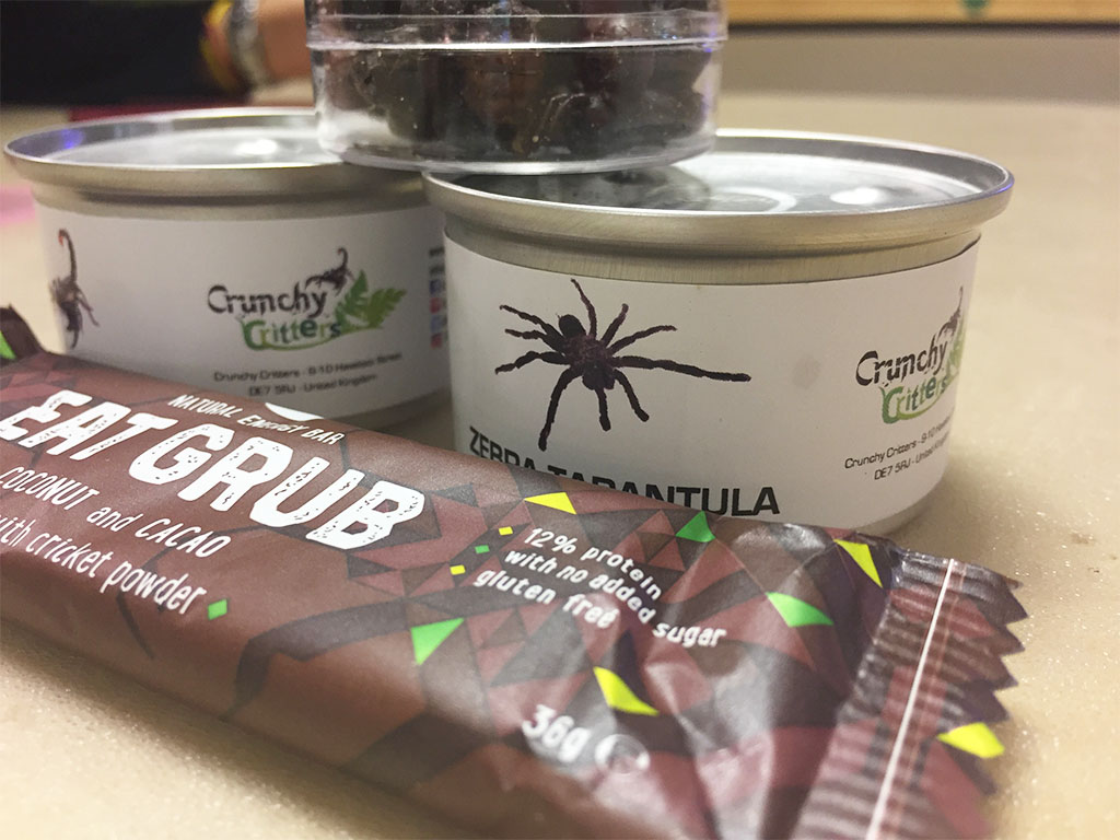 BUG BAR & TINNED TARANTULA... YUM